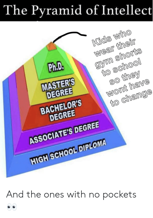Gym, School, and Kids: The Pyramid of Intellect  Kids Who  wear their  gym shorts  to school  so they  wont have  to change  Ph.D  MASTER'S  DEGREE  BACHELOR'S  DEGREE  ASSOCIATE'S DEGREE  HIGHSCHOOL DIPLOMA And the ones with no pockets👀
