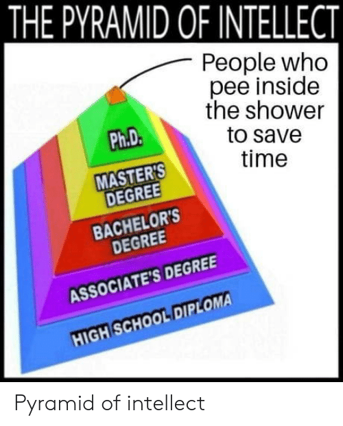 School, Shower, and Masters: THE PYRAMID OF INTELLECT  People who  pee insidee  the shower  to save  time  Ph.D  MASTERS  DEGREE  BACHELOR'S  DEGREE  ASSOCIATE'S DEGREE  HIGH SCHOOL DIPLOMA  CİA Pyramid of intellect