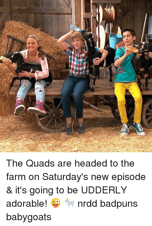Memes, Adorable, and 🤖: The Quads are headed to the farm on Saturday's new episode & it's going to be UDDERLY adorable! 😜 🐐 nrdd badpuns babygoats