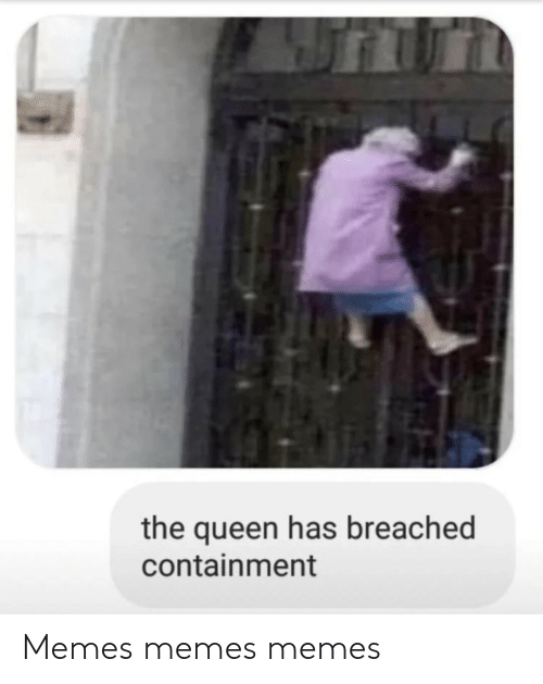 containment: the queen has breached  containment Memes memes memes