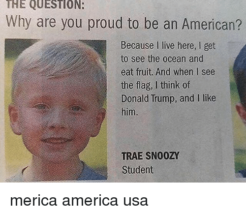 America, Donald Trump, and Memes: THE QUESTION:  Why are you proud to be an American?  Because I live here, I get  to see the ocean and  eat fruit. And when I see  the flag, I think of  Donald Trump, and I like  him  TRAE SN00ZY  Student merica america usa