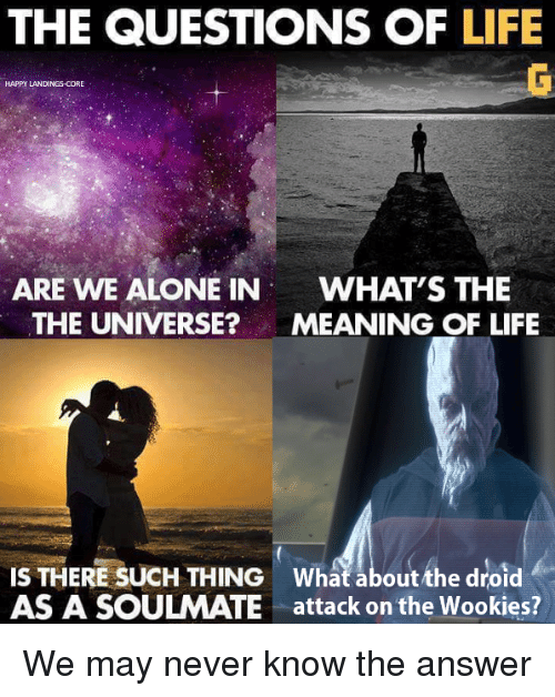 wookies: THE QUESTIONS OF LIFE  HAPPY LANDINGS-CORE  ARE WE ALONE IN  WHAT'S THE  THE UNIVERSE?MEANING OF LIFE  IS THERE SUCH THING What about the droid  AS A SOULMATE attack on the Wookies? We may never know the answer