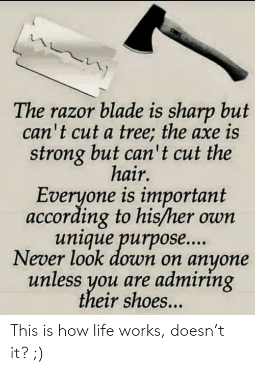 Blade, Life, and Shoes: The razor blade is sharp but  can't cut a tree; the axe is  strong but can't cut the  hair.  Everyone is important  according to his/her own  unique purpose...  Never look down on anyone  unless you are admiring  their shoes... This is how life works, doesn't it? ;)