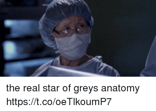 Memes, Grey's Anatomy, and Star: the real star of greys anatomy https://t.co/oeTlkoumP7