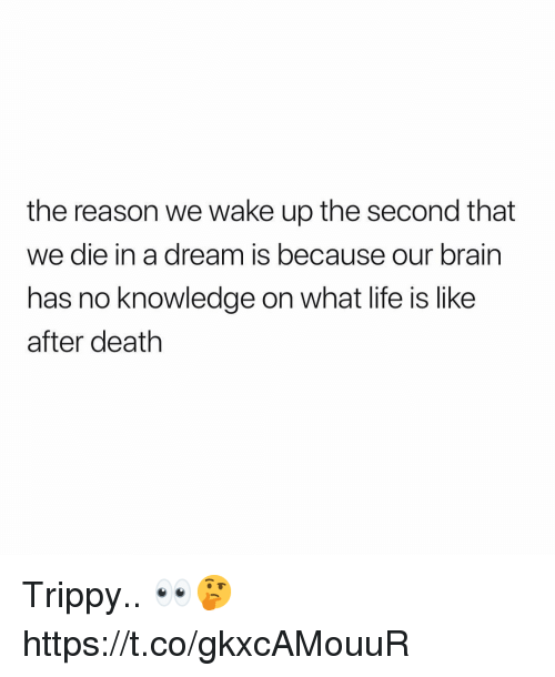 A Dream, Life, and Brain: the reason we wake up the second that  we die in a dream is because our brain  has no knowledge on what life is like  after death Trippy.. 👀🤔 https://t.co/gkxcAMouuR