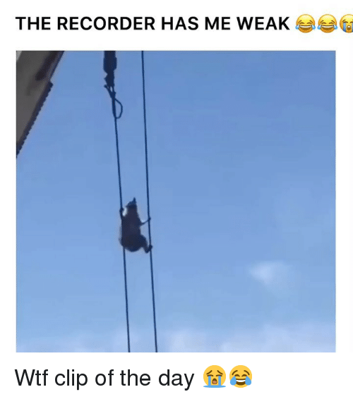 Funny, Wtf, and Day: THE RECORDER HAS ME WEA Wtf clip of the day 😭😂