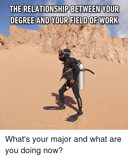 Dank, Work, and 🤖: THE RELATIONSHIP BETWEEN YOUR  DEGREE AND YOUR FIELD OF WORK What's your major and what are you doing now?