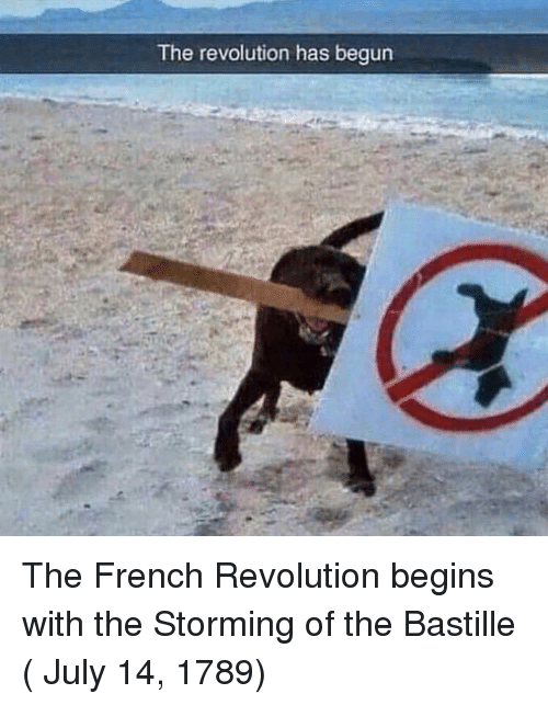 Revolution, French, and French Revolution: The revolution has begun The French Revolution begins with the Storming of the Bastille ( July 14, 1789)