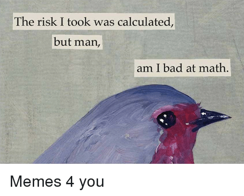 Risk I Took Was Calculated But Man Am I Bad At Math: The risk I took was calculated,  but man,  am I bad at math, Memes 4 you