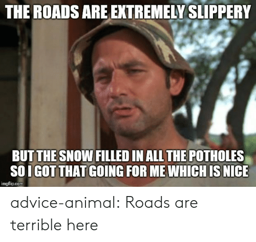 Advice, Tumblr, and Animal: THE ROADS ARE EXTREMELY SLIPPERY  BUTTHESNOW FILLED IN ALL THE POTHOLES  SO I GOT THAT GOING FOR ME WHICHIS NICE  imgflip.com advice-animal:  Roads are terrible here