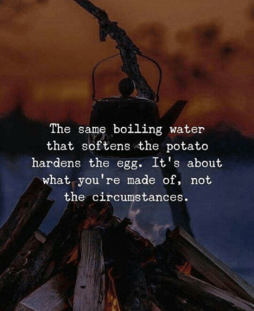 Potato, Water, and What: The same boiling water  that softens the potato  hardens the egg. It's about  what you're made of, not  the circumstances.