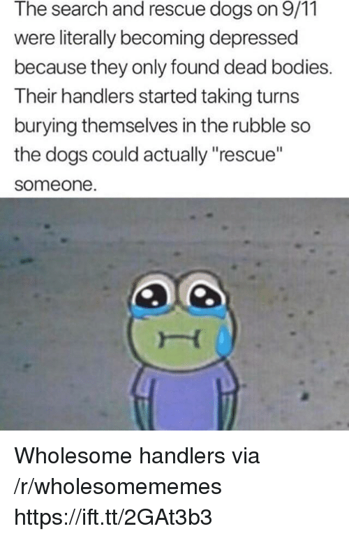 """9/11, Bodies , and Dogs: The search and rescue dogs on 9/11  were literally becoming depressed  because they only found dead bodies.  Their handlers started taking turns  burying themselves in the rubble so  the dogs could actually """"rescue""""  someone Wholesome handlers via /r/wholesomememes https://ift.tt/2GAt3b3"""