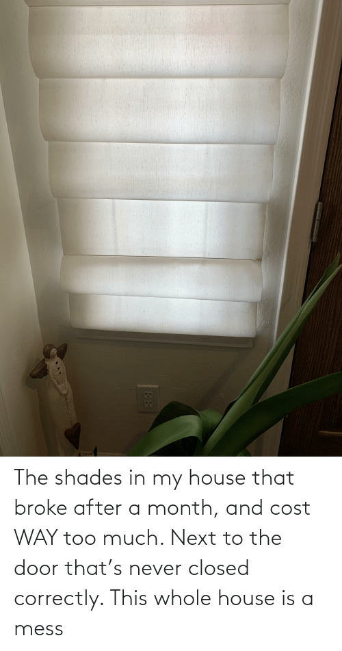 Next To: The shades in my house that broke after a month, and cost WAY too much. Next to the door that's never closed correctly. This whole house is a mess