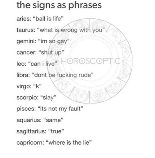 The Signs as Phrases Aries Ball Is Life Taurus What Is Wrong With