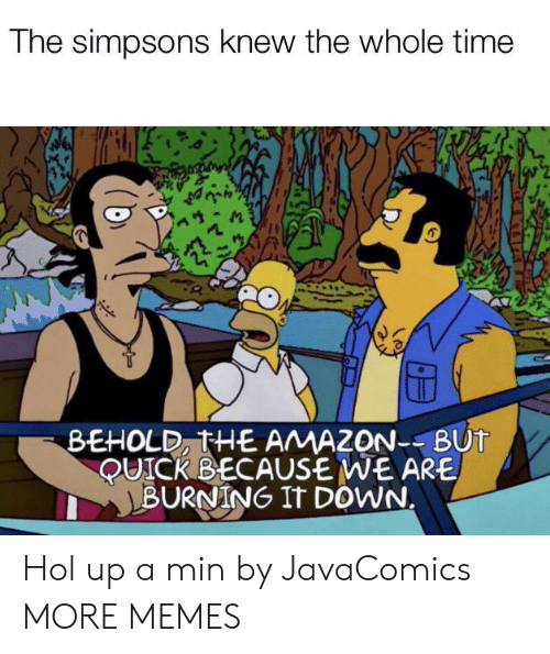 Amazon, Dank, and Memes: The simpsons knew the whole time  BEHOLD, THE AMAZON--BUT  QUICK BECAUSE WE ARE  BURNING IT DOWN. Hol up a min by JavaComics MORE MEMES