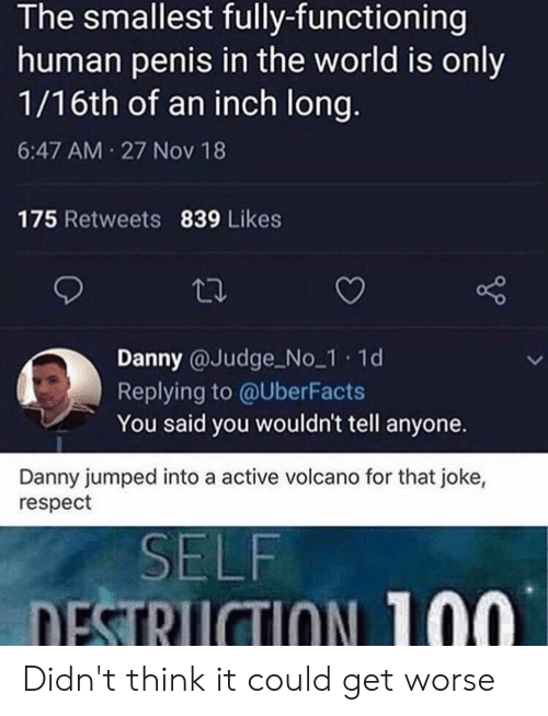 Respect, Penis, and Volcano: The smallest fully-functioning  human penis in the world is only  1/16th of an inch long.  6:47 AM 27 Nov 18  175 Retweets 839 Likes  Danny @Judge No 1 1d  Replying to @UberFacts  You said you wouldn't tell anyone.  Danny jumped into a active volcano for that joke,  respect  SELF  DESTRUCTION 100 Didn't think it could get worse