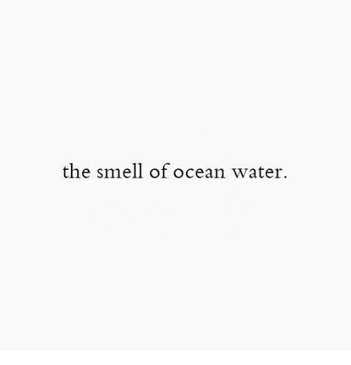 Smell, Ocean, and Water: the smell of ocean water.
