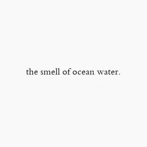 Smell, Ocean, and Water: the smell of ocean water