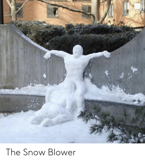 Snow: The Snow Blower