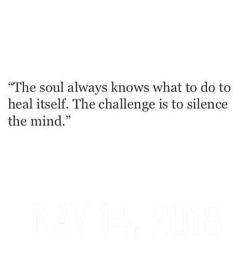 """Mind, Silence, and Soul: """"The soul always knows what to do to  heal itself. The challenge is to silence  the mind.""""  3"""