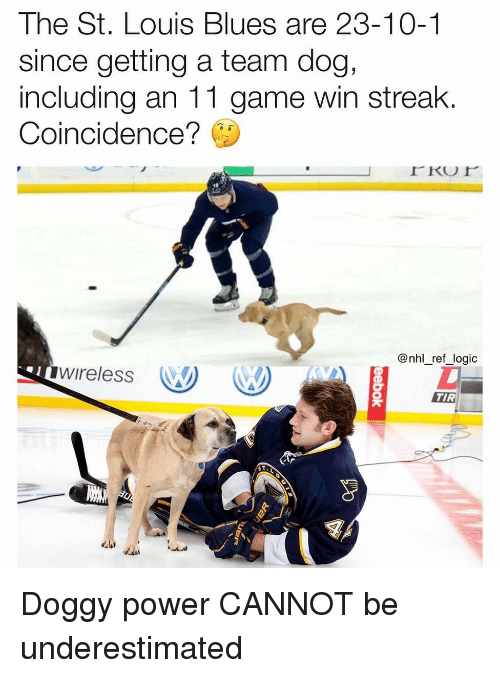 Logic, Memes, and National Hockey League (NHL): The St. Louis Blues are 23-10-1  since getting a team dog,  including an 11 game win streak  Coincidence?  @nhl_ref_logic  wireless W  TIR Doggy power CANNOT be underestimated