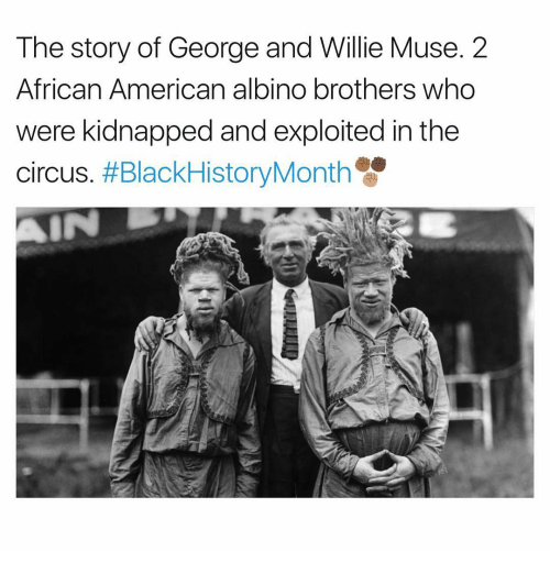 mused: The story of George and Willie Muse. 2  African American albino brothers who  were kidnapped and exploited in the  circus. #BlackHistoryMonth  IN