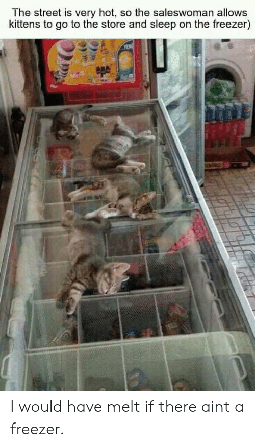 T A: The street is very hot, so the saleswoman allows  kittens to go to the store and sleep on the freezer)  YEN I would have melt if there aint a freezer.