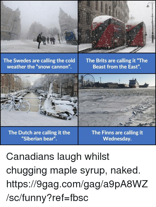 """9gag, Dank, and Funny: The Swedes are calling the cold  weather the """"snow cannon"""".  The Brits are calling it """"The  Beast from the East"""".  The Dutch are calling it the  Siberian bear""""  The Finns are calling it  Wednesday. Canadians laugh whilst chugging maple syrup, naked.  https://9gag.com/gag/a9pA8WZ/sc/funny?ref=fbsc"""