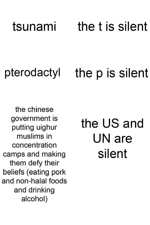 Chinese: the t is silent  tsunami  pterodactyl  the p is silent  the chinese  government is  putting uighur  muslims in  the US and  UN are  concentration  silent  camps and making  them defy their  beliefs (eating pork  and non-halal foods  and drinking  alcohol)