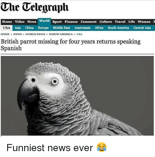 home video: The Telegraph  Home Video News World Sport Finance Comment Culture Travel Life WomenI  Asia | China Europe Middle East Australasia Africa South America Central Asia  HOME » NEWS  WORLD NEWS » NORTHAMERICA » USA  British parrot missing for four years returns speaking  Spanish Funniest news ever 😂