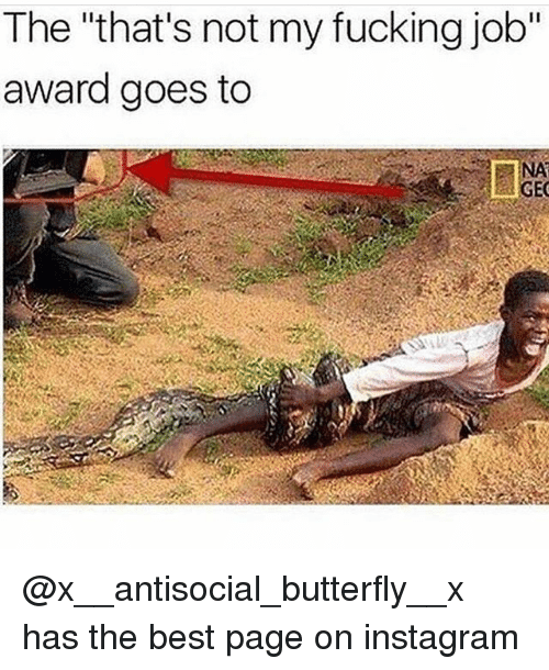 """Fucking, Instagram, and Memes: The """"that's not my fucking job""""  award goes to  NA  GEC @x__antisocial_butterfly__x has the best page on instagram"""