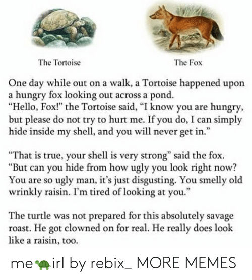 """Strongness: The Tortoise  The Fox  One day while out on a walk, a Tortoise happened upon  a hungry fox looking out across a pond.  """"Hello, Fox!"""" the Tortoise said, """"I know you are hungry  but please do not try to hurt me. If you do, I can simply  hide inside my shell, and you will never get in.""""  95  """"That is true, your shell is very strong"""" said the fox.  """"But can you hide from how ugly you look right now?  You are so ugly man, it's just disgusting. You smelly old  wrinkly raisin. I'm tired of looking at you.""""  The turtle was not prepared for this absolutely savage  roast. He got clowned on for real. He really does look  like a raisin, too. me🐢irl by rebix_ MORE MEMES"""