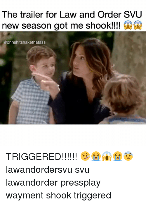 Law and Order: SVU, Memes, and Law and Order: The trailer for Law and Order SVU  new season got me shook!!!  @ohhshitshakethatass TRIGGERED!!!!!! 🤒😭😱😭😨 lawandordersvu svu lawandorder pressplay wayment shook triggered