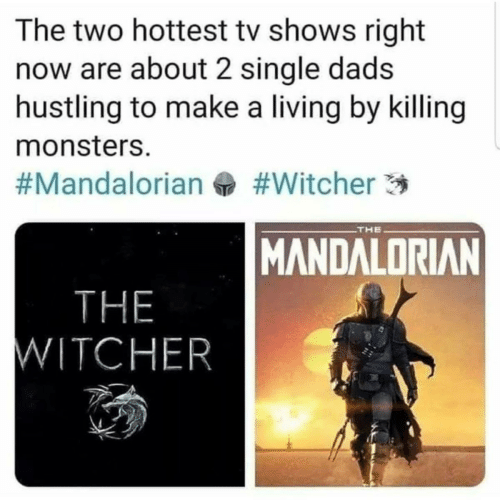 Shows: The two hottest tv shows right  now are about 2 single dads  hustling to make a living by killing  monsters.  #Witcher 3  #Mandalorian  THE  MANDALORIAN  THE  WITCHER