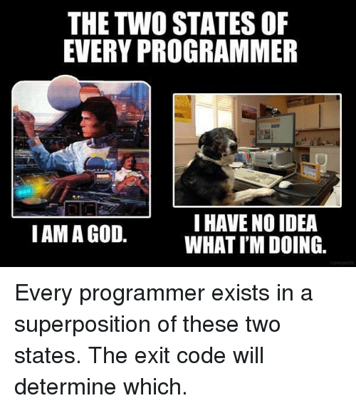 God, Idea, and Code: THE TWO STATES OF  EVERY PROGRAMMER  I HAVE NO IDEA  WHAT I'M DOING.  IAM A GOD. Every programmer exists in a superposition of these two states. The exit code will determine which.
