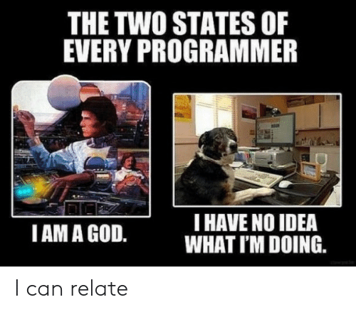 God, Idea, and Can: THE TWO STATES OF  EVERY PROGRAMMER  I HAVE NO IDEA  WHAT I'M DOING.  IAM A GOD. I can relate