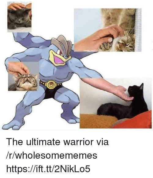 Warrior, Ultimate Warrior, and Via: The ultimate warrior via /r/wholesomememes https://ift.tt/2NikLo5