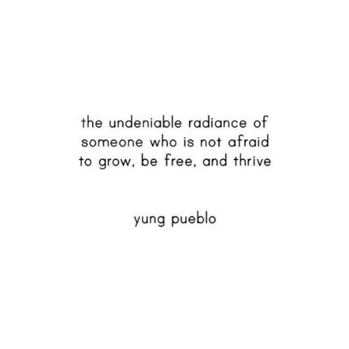 thrive: the undeniable radiance of  someone who is not afraid  to grow, be free, and thrive  yung pueblo