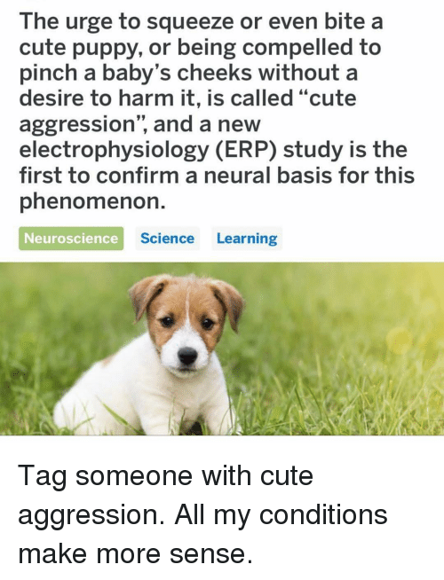"Cute, Memes, and Puppy: The urge to squeeze or even bite a  cute puppy, or being compelled to  pinch a baby's cheeks without a  desire to harm it, is called ""cute  aggression"", and a new  electrophysiology (ERP) study is the  first to confirm a neural basis for this  phenomenoh.  Neuroscience  Science Learning Tag someone with cute aggression. All my conditions make more sense."