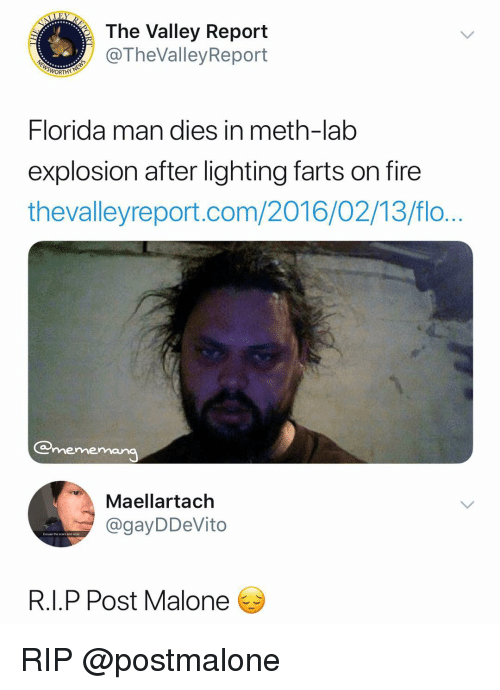 Fire, Florida Man, and Post Malone: The Valley Report  @TheValleyReport  Florida man dies in meth-lab  explosion after lighting farts on fire  thevalleyreport.com/2016/02/13/flo  mememana  Maellartach  @gayDDeVito  Excuse tne scars and ane  R.I.P Post Malone RIP @postmalone
