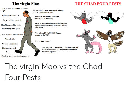 """Falsified: The virgin Mao  THE CHAD FOUR PESTS  Killed at least 45,000,000 of his own  рeople  Persecution of sparrows caused a boom  in insect pest populations  Had at least one STD  Destroyed his country's ancient  culture due to insecurity  Weird balding hairstyle  Tried to mask the failures of collectivized  Plumbing gave him anxiety  agriculture  as """"natural disasters"""" like the  USSR did  Perpetually constipated  Wanted to gift 10,000,000 Chinese  """"His"""" wife had a male harem  women to the USA  Was infertile  Was a chain smoker  Caused cannibalism  The People's """"Liberation"""" Army only won the  Filthy rotten teeth  Civil War because the nationalists didn't run  from the Japanese  5'9  Falsified his own  swimming records The virgin Mao vs the Chad Four Pests"""