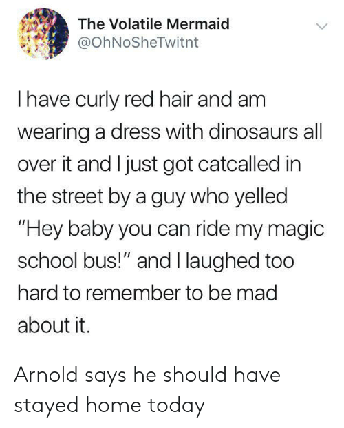 """arnold: The Volatile Mermaid  @OhNoSheTwitnt  Ihave curly red hair and am  wearing a dress with dinosaurs all  over it and I just got catcalled in  the street by a guy who yelled  """"Hey baby you can ride my magic  school bus!"""" and I laughed too  hard to remember to be mad  about it. Arnold says he should have stayed home today"""