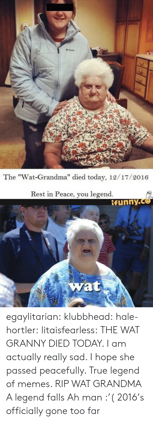 "Wat Grandma: The ""Wat-Grandma"" died today, 12/17/2016  Rest in Peace, you legend.  ifynny.co  1   wat egaylitarian:  klubbhead:   hale-hortler:   litaisfearless: THE WAT GRANNY DIED TODAY. I am actually really sad. I hope she passed peacefully. True legend of memes. RIP WAT GRANDMA A legend falls   Ah man :'(   2016's officially gone too far"