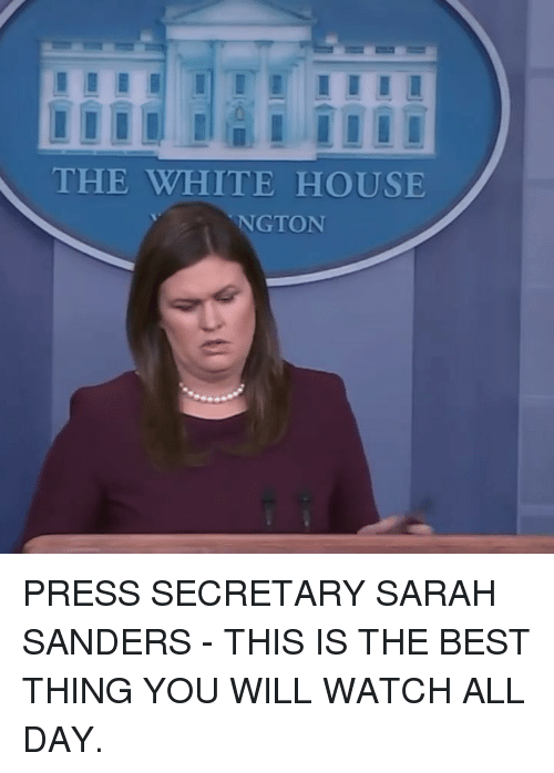 Memes, White House, and Best: THE WHITE HOUSE  NGTON PRESS SECRETARY SARAH SANDERS - THIS IS THE BEST THING YOU WILL WATCH ALL DAY.