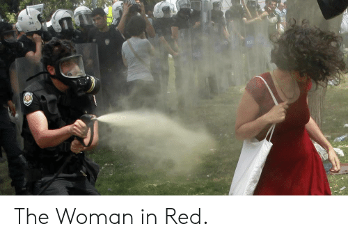 the woman in red: The Woman in Red.