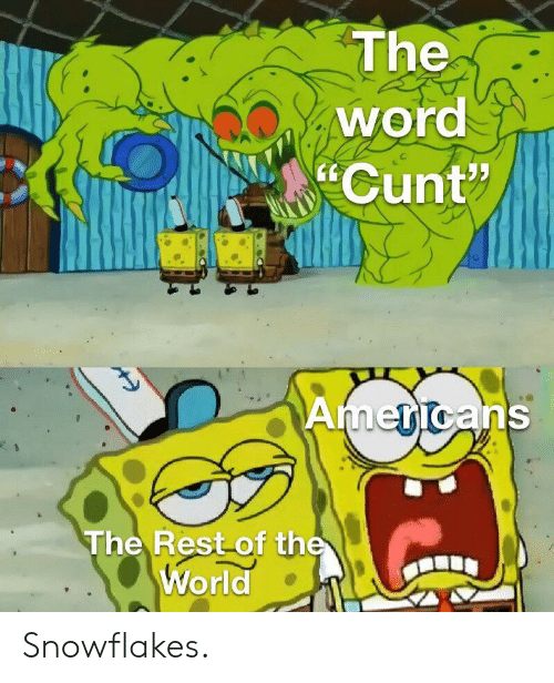 """Cunt, Word, and World: The  word  Cunt""""  Americans  The Rest of the  World Snowflakes."""