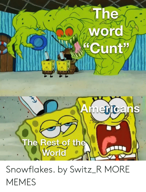 """Dank, Memes, and Target: The  word  Cunt""""  Americans  The Rest of the  World Snowflakes. by Switz_R MORE MEMES"""