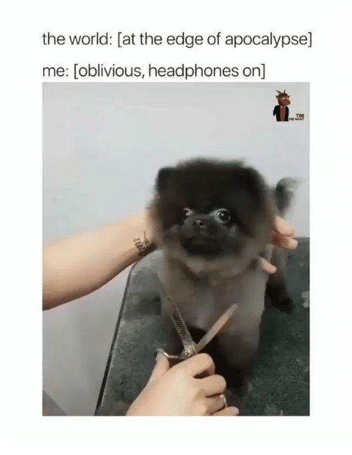 Memes, Headphones, and World: the world: [at the edge of apocalypse]  me: [oblivious, headphones on]