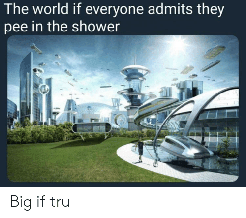 Pee In The Shower: The world if everyone admits they  pee in the shower Big if tru