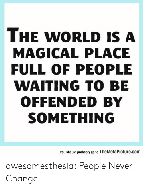 Tumblr, Blog, and World: THE WORLD IS A  MAGICAL PLACE  FULL OF PEOPLE  WAITING TO BE  OFFENDED BY  SOMETHING  you should probably go to TheMetaPicture.com awesomesthesia:  People Never Change